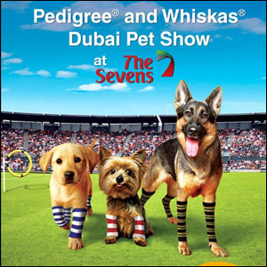 dubai pet show